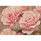 Алмазная вышивка Розовые розы