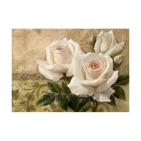 Алмазная вышивка Белые розы