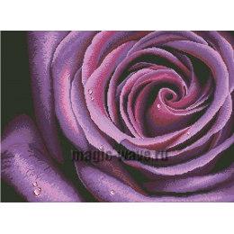Алмазная вышивка Фиолетовая роза