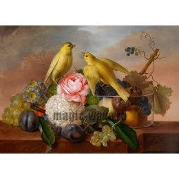 Алмазная вышивка Натюрморт и птицы