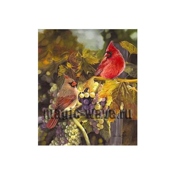 Урожай (две птицы в винограде)