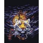 Грациозный тигр