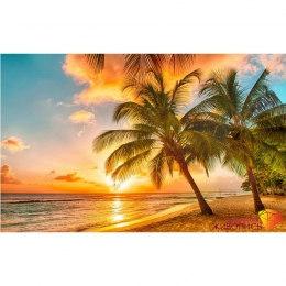 Алмазная вышивка Тропический закат