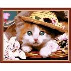 Котенок в шляпке