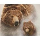 Алмазная вышивка Бурые медведи