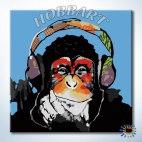 Monkey - Music. Чувство ритма