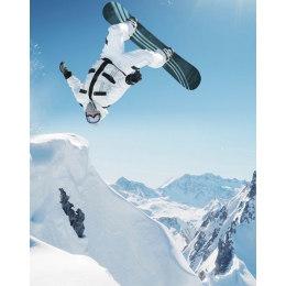 Алмазная вышивка Зимний прыжок