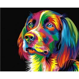Радужный пес