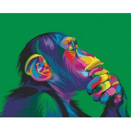 Радужная обезьяна