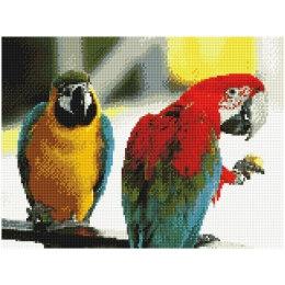 Алмазная вышивка Парочка попугаев