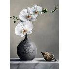 Алмазная вышивка Белая орхидея