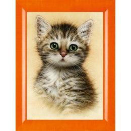 Алмазная вышивка Портрет котенка