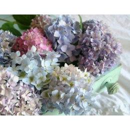 Алмазная вышивка Разноцветие