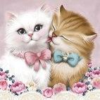 Алмазная вышивка Кот и кошка