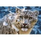 Пазл Снежный леопард