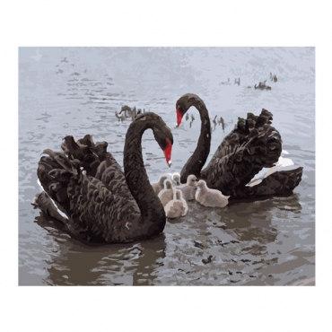 Чёрные лебеди