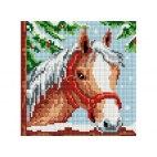 Алмазная вышивка Белогривая лошадка