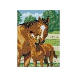 Алмазная вышивка Лошадь с жеребёнком