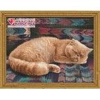 Алмазная вышивка Персидский кот