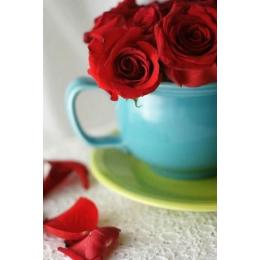 Алмазная вышивка Розовое утро