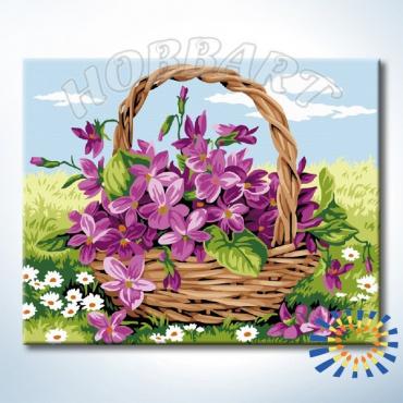 Луговой букет картина по номерам (Hobbart Lite)