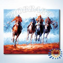 «Поло» раскраска по номерам (Hobbart Lite)