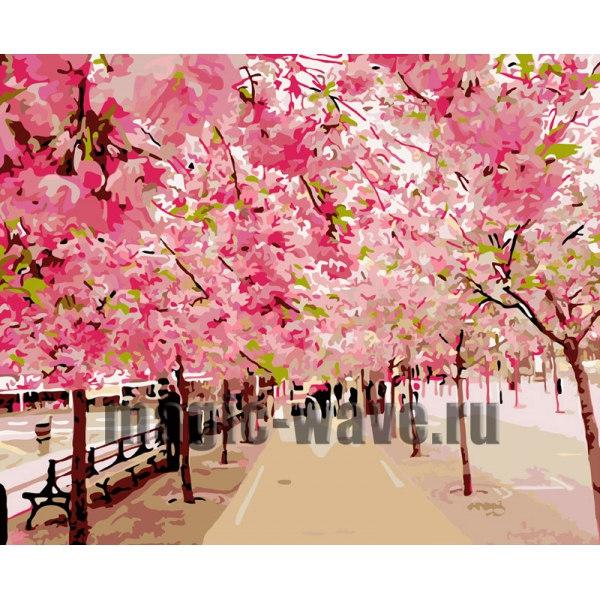 Розовая аллея