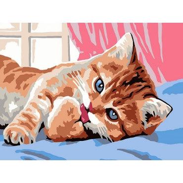 Кот чистюля
