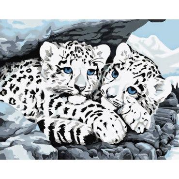 Снежные леопарды