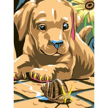 Улитка и щенок