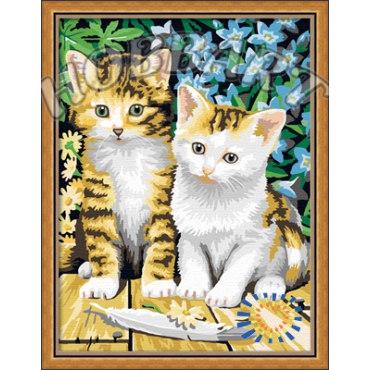 Чудесные котята