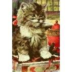 Алмазная вышивка Любопытный котенок