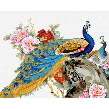 Китайские павлины