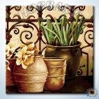 На веранде садовода