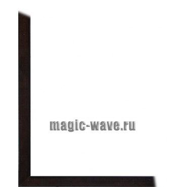 Рамка для картин на холсте Rita (размер 40*50)