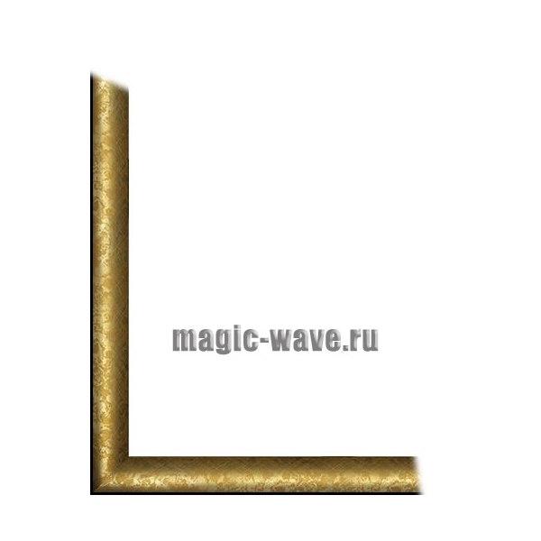 Универсальная рамка для картин Carmen (размер 40*50)