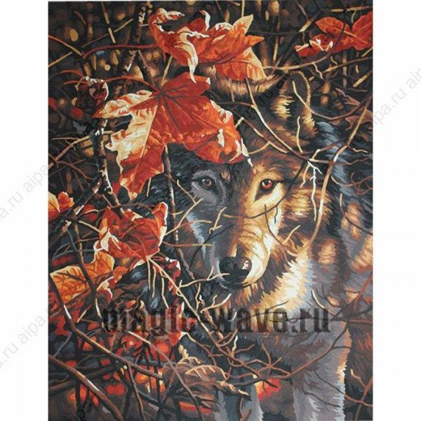 Волк в осеннем лесу