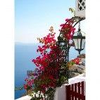 Алмазная вышивка Цветущий балкон на Санторини