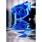 Алмазная вышивка Синяя роза на воде