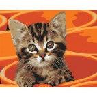 Котенок в кружке