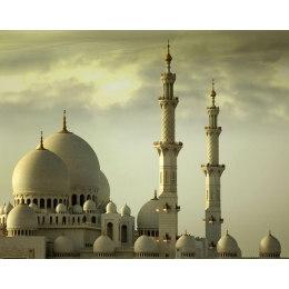 Алмазная вышивка Мечеть шейха Зайда