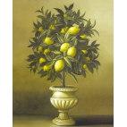 Алмазная вышивка Лимонное дерево