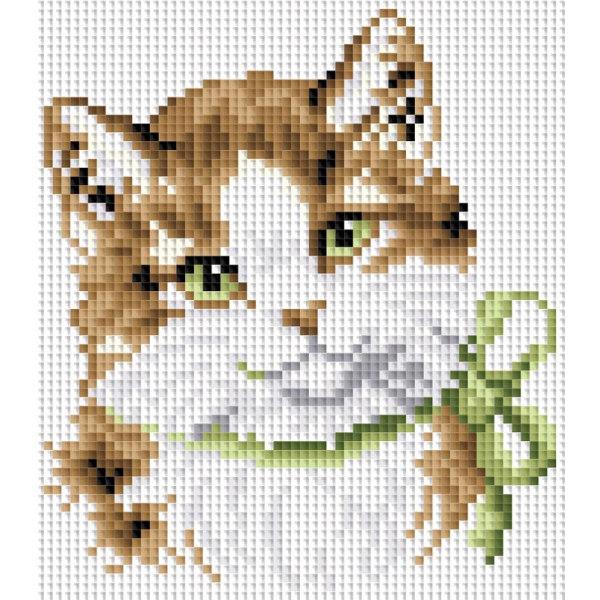 Алмазная вышивка Кошка Алиса
