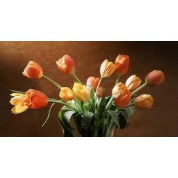 Тюльпаны (без подрамника)