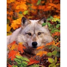 Алмазная вышивка Волк в листве