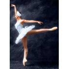Алмазная вышивка Прима-балерина