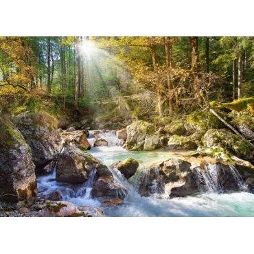 Пазл Лесной ручей