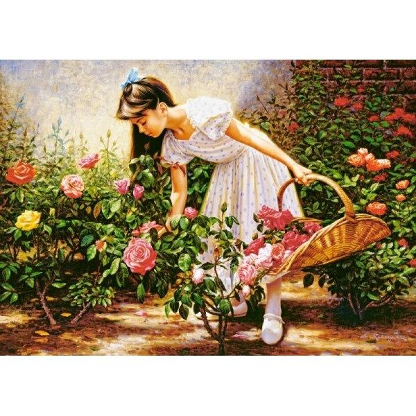 Пазл В саду роз