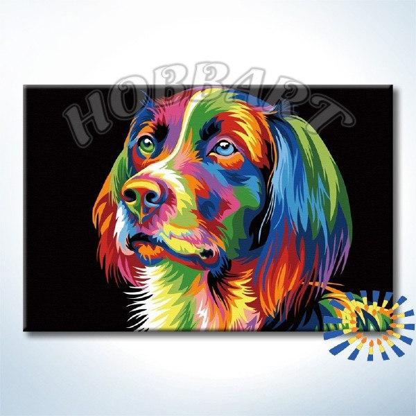 Ваю Ромдони. Радужный пёс