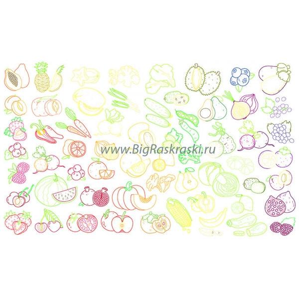 Плакат-раскраска «Съедобная радуга», цветная (60х100 см)